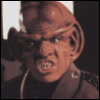 That one bitch: Ferengi Bastard!
