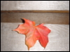 u_anilag userpic