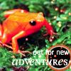 Adventure Frog