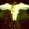Comrade Cat: general-engel kosmonauta