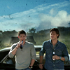bevvies by the impala