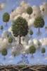 Francishka: деревоя