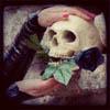 череп (pozdnaya_vesna)