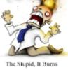 weird_fin: the stupid