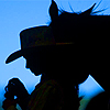 Cowgirl Rancher Stablehand Silhouette