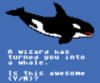 wizard whale is awesome