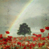 Lyd: weather - rainbow