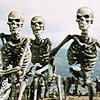J&A - Skeletons