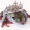froggi_girl userpic