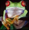 Протуберанец: лягушка
