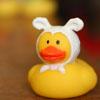 Duck ears