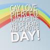 Megami284: Gay Love FTW