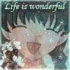 fb wonderful