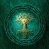 tree of life, корни, крона, дерево жизни, ствол