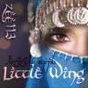 VigOrli LittleWing2