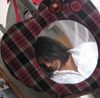 1krishna_girl userpic
