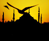 stambul_i_more userpic