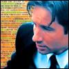 X-Files: Mulder's Field