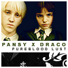 draco/pansy otp