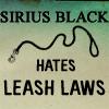 sirius leashlaws