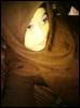 adibah_gila userpic