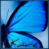 blu butterfly nu