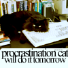 macro - procrastination cat