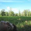 на траве