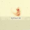 Camisado Ashlie: Random - Ducky