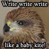 write write write kite