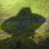 tikal shadow