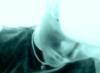 obx_41 userpic
