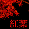 amai_momiji userpic