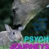 psych_journeys userpic