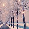 stock - winter