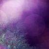 frelsingi userpic