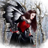romaine24: angelwings