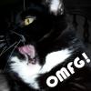 Molly - OMFG!