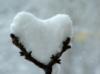 la_invierno userpic