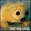 clubbing in da hood