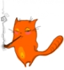 shakti8: оранж кошка