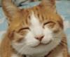 Catraven: smileycat