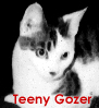 Teeny Gozer: TeenyGozer