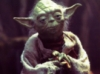 Annoying Pant-leg Pulling Chihuahua of Justice!: Yoda Wise Is