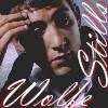 Ryan Wolfe Stills