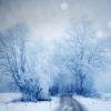 Stock-Winter-Blue and beautiful