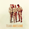 Mish: Team -- Team Awesome
