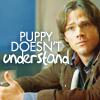 nbaeker: sam puppy doesnt understand