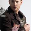 Jensen+kittens