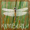 Kimberly: dragonfly